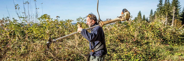 Technicien de maintenance en scierie
