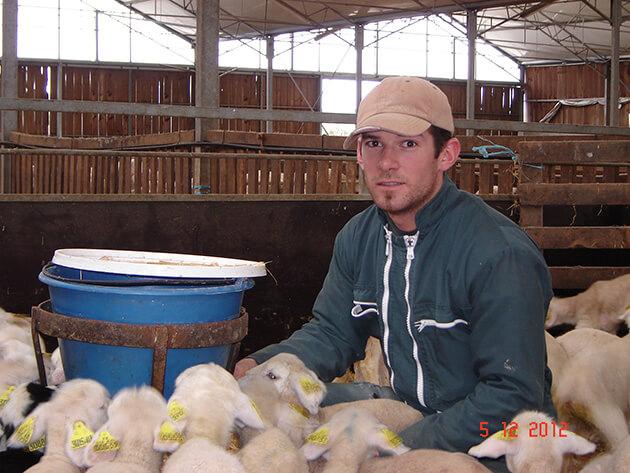 Témoignage agent d'élevage ovin