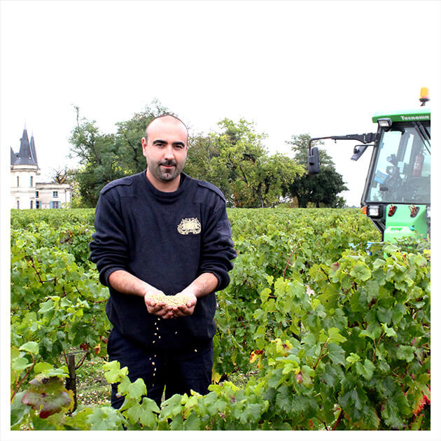 Témoignage agent tractoriste en viticulture