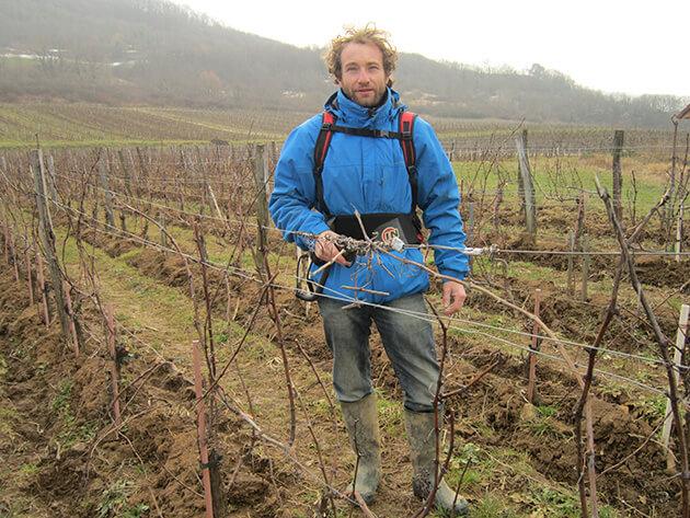 Témoignage agent viticole