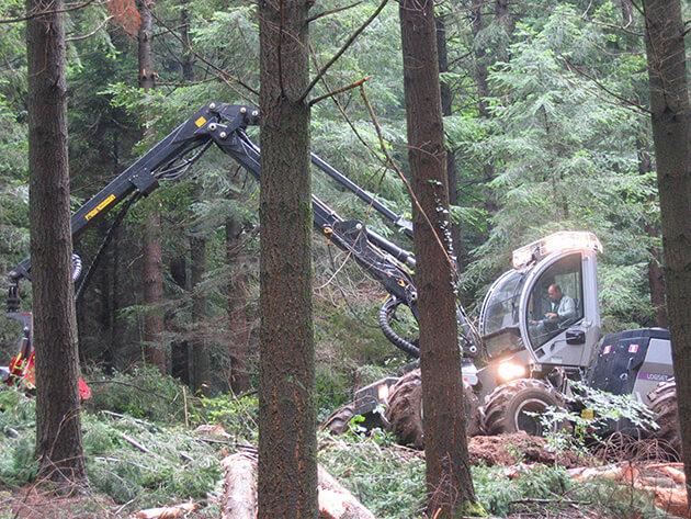 Témoignage conducteur engins forestiers