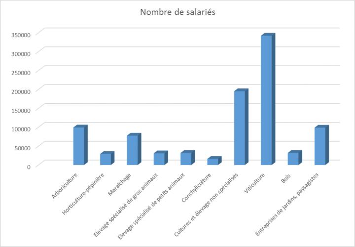 Graphique sur les secteurs qui recrutent le plus