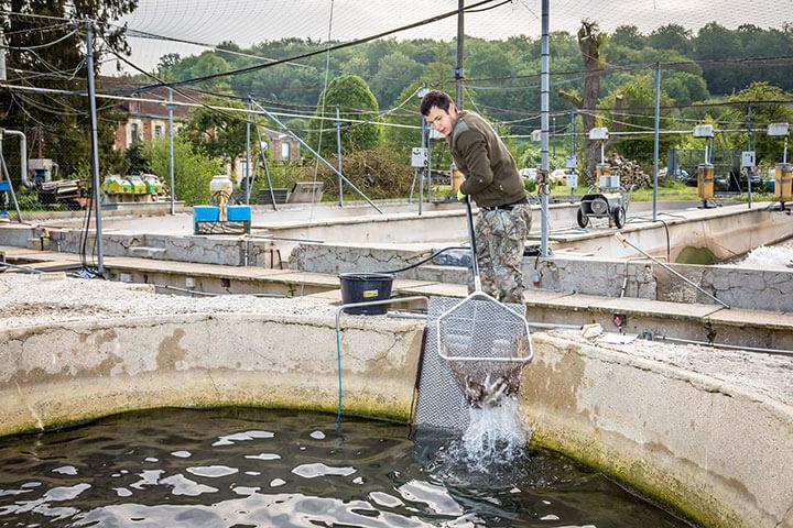 Métiers aquaculture
