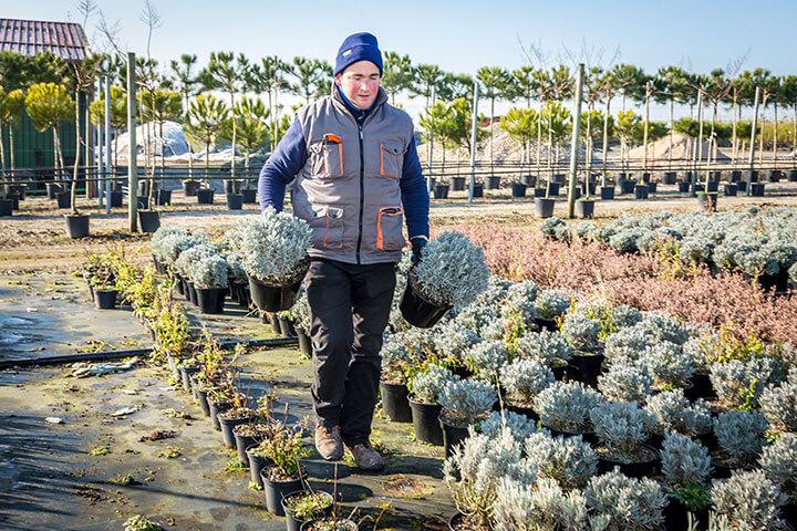 Métiers horticulture pépinière
